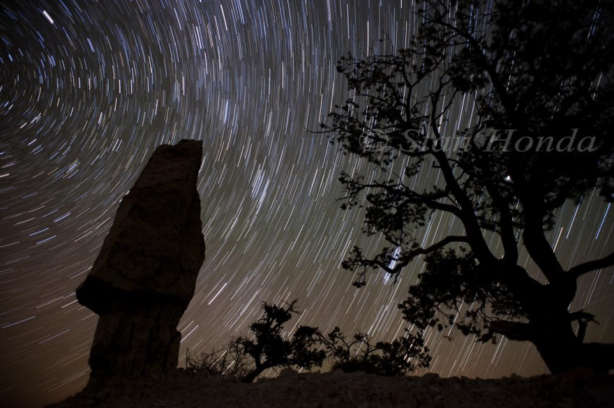 Star trails, Shoshone Point
