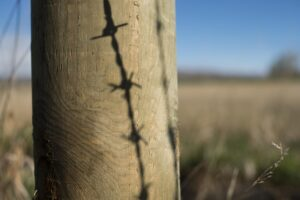 Barbed wire shadow.