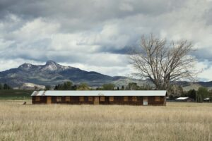 Barracks and tree in meadow, Heart Mountain on the horizon.
