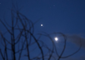 Venus and Jupiter through aspen branches.