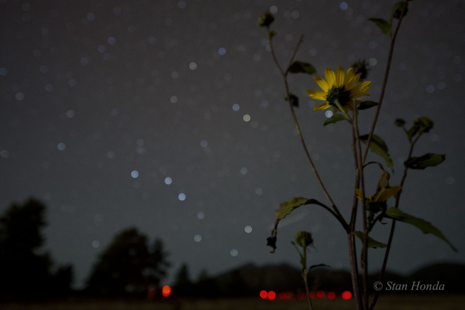 Sunflower, Big Dipper, Flagstaff, Arizona. At the Flagstaff Star Party in September.