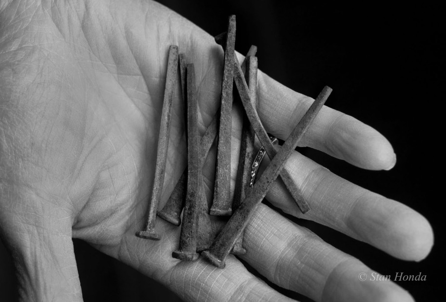 Square nails dating from original construction found on a farm where a barracks was used as an animal enclosure.