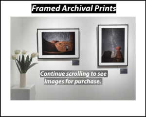 Product-Framed print2